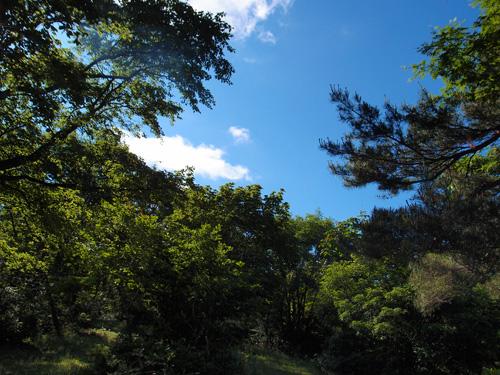 キャンプ@蔵王坊平国設野営場 1日目