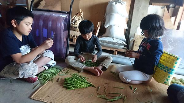 2017年5月20日・21日 山菜採りに父の実家へ