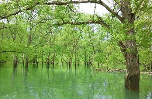 カヌーイング@白川湖
