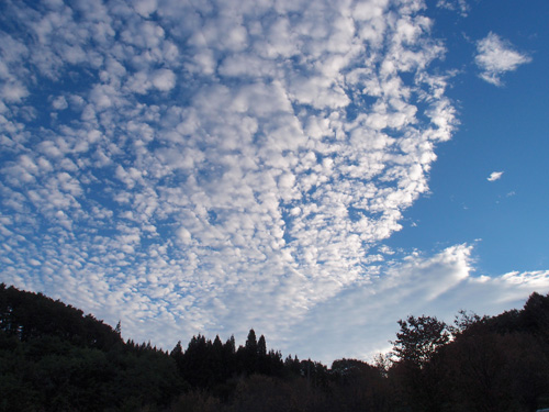 カヌーやめて弓張平公園→水沢温泉