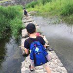 馬見ヶ崎川の探検 下流編