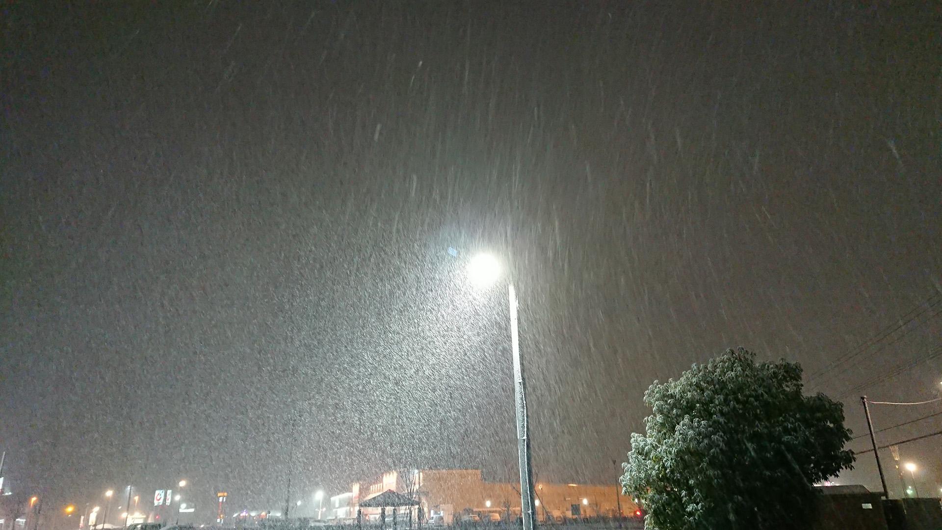 ようやくの降雪