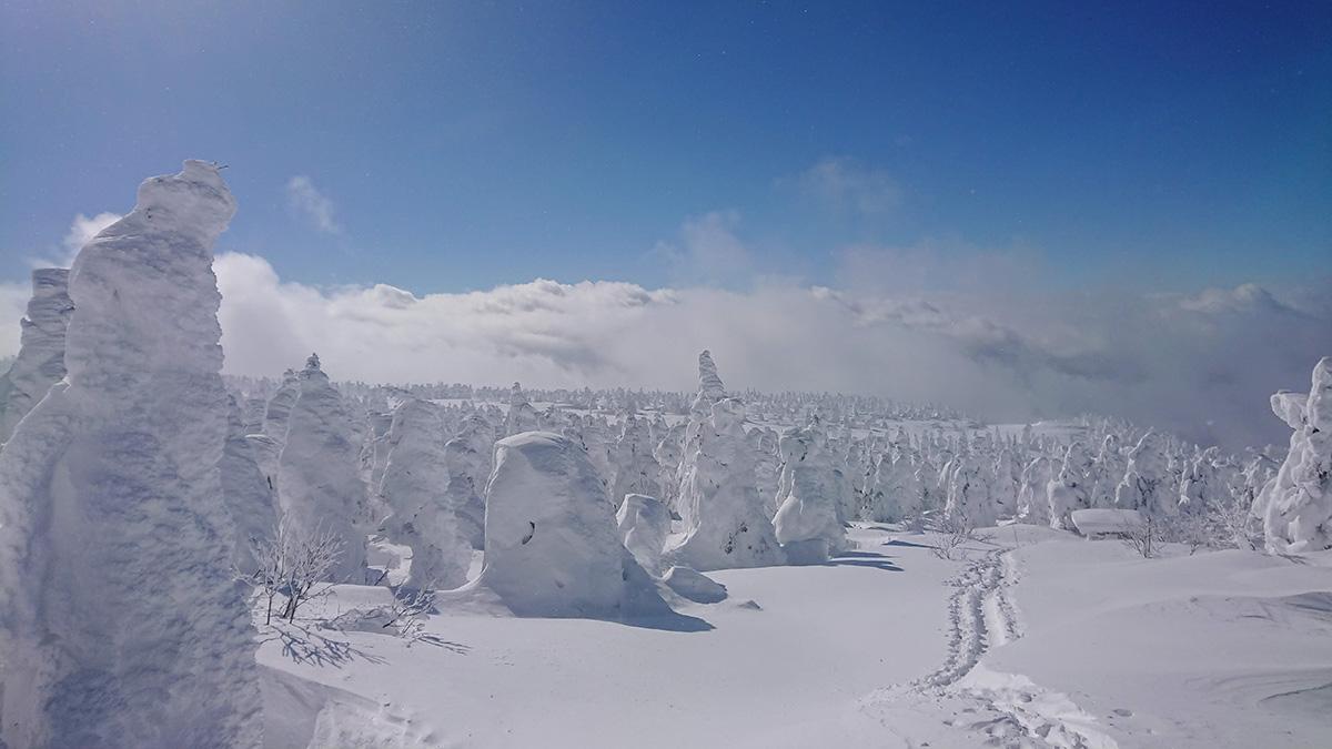 冬の蔵王 樹氷原を歩いてお釜へ