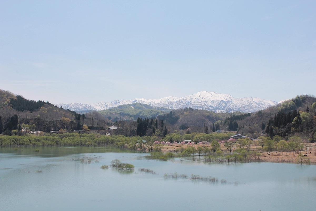 白川湖で幻想的な水没林を愉しむカヌーキャンプ 後編