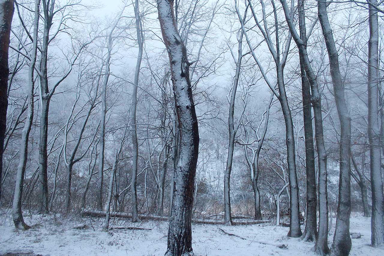 冬キャンプ@本宮キャンプ場